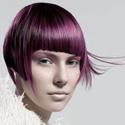 Wigs Catalog